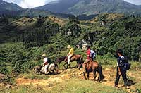 Go where you want when you want - a private horseriding tour in Vietnam's north-west mountain ranges far from the usual tourist trails